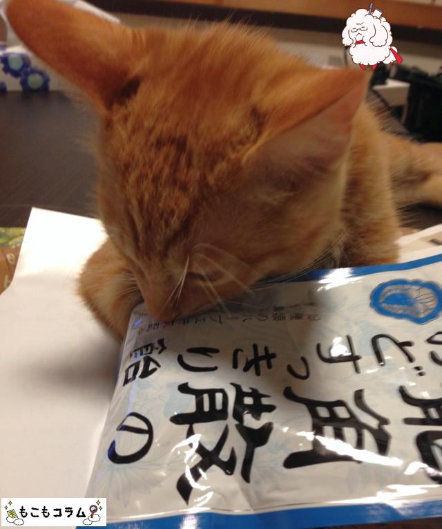 龍角散のど飴と猫